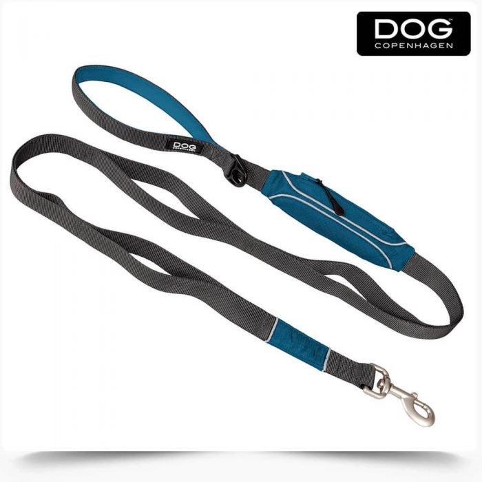 Blue leash Dog Copenhagen